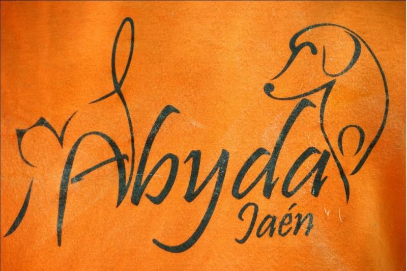 Abyda Jaen
